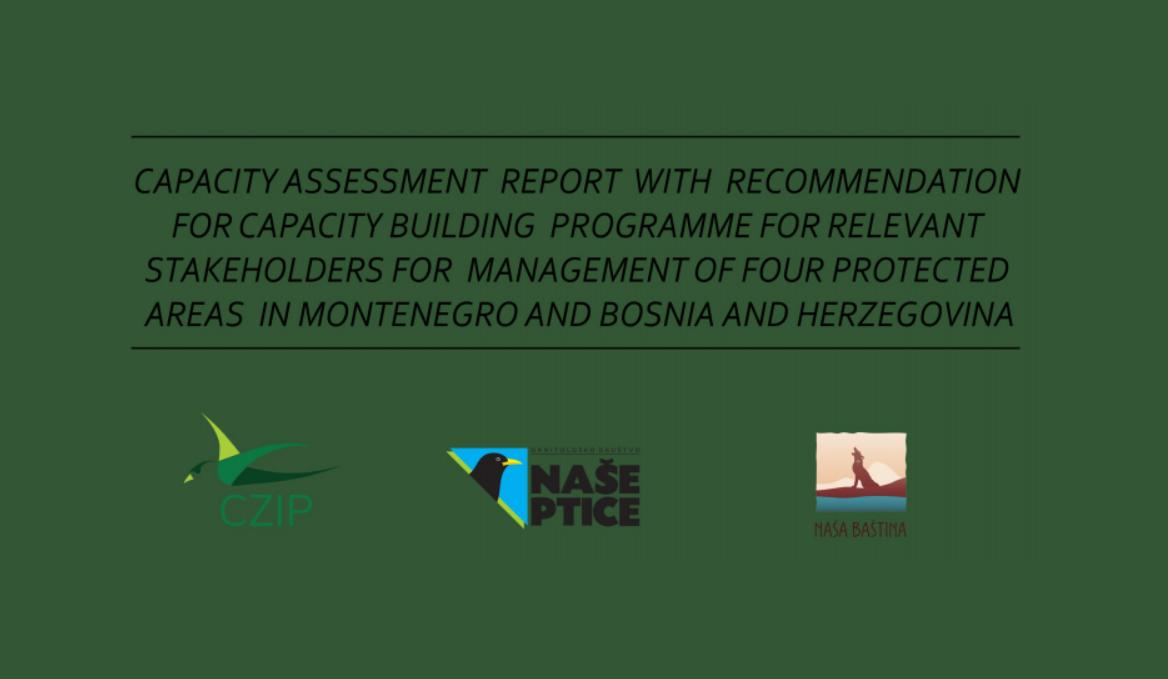 Capacity assessment report